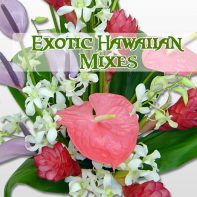 Exotic Hawaiian Mixes